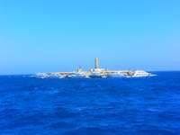 Дайвинг в Египте, острова Бразерс