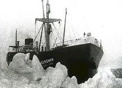 """Как искали корабль """"Челюскин"""""""